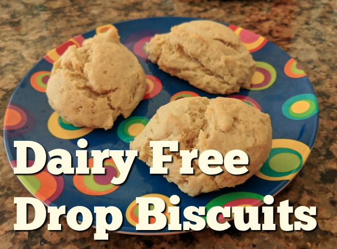 Dairy Free Drop Biscuits Dye Free Kids